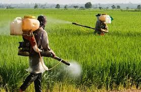 انواع سم کشاورزی