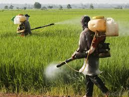 لیست قیمت سم کشاورزی اتیون