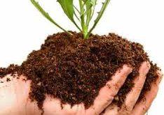 کود کشاورزی مشهد