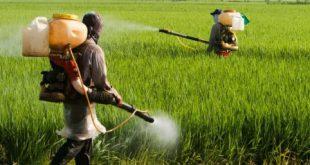 سموم کشاورزی اهواز