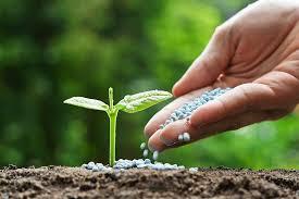 تولید کود کشاورزی