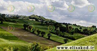 شرکتهای تولید کننده سم و کود کشاورزی